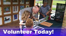 Help out LHV volunteer today!